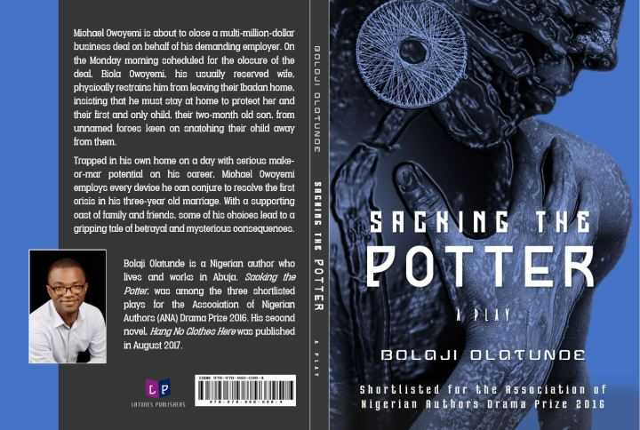 Sacking The Potter Front and Back Cover 2Image HR With Logo