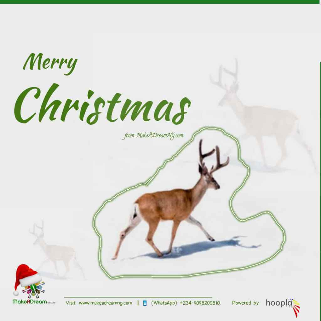 Merry Christmas from all of us at MakeADreamNG.com and Hoopla Hive